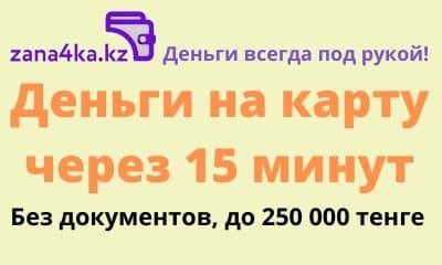 Zana4ka KZ, Займы без документов и без залога